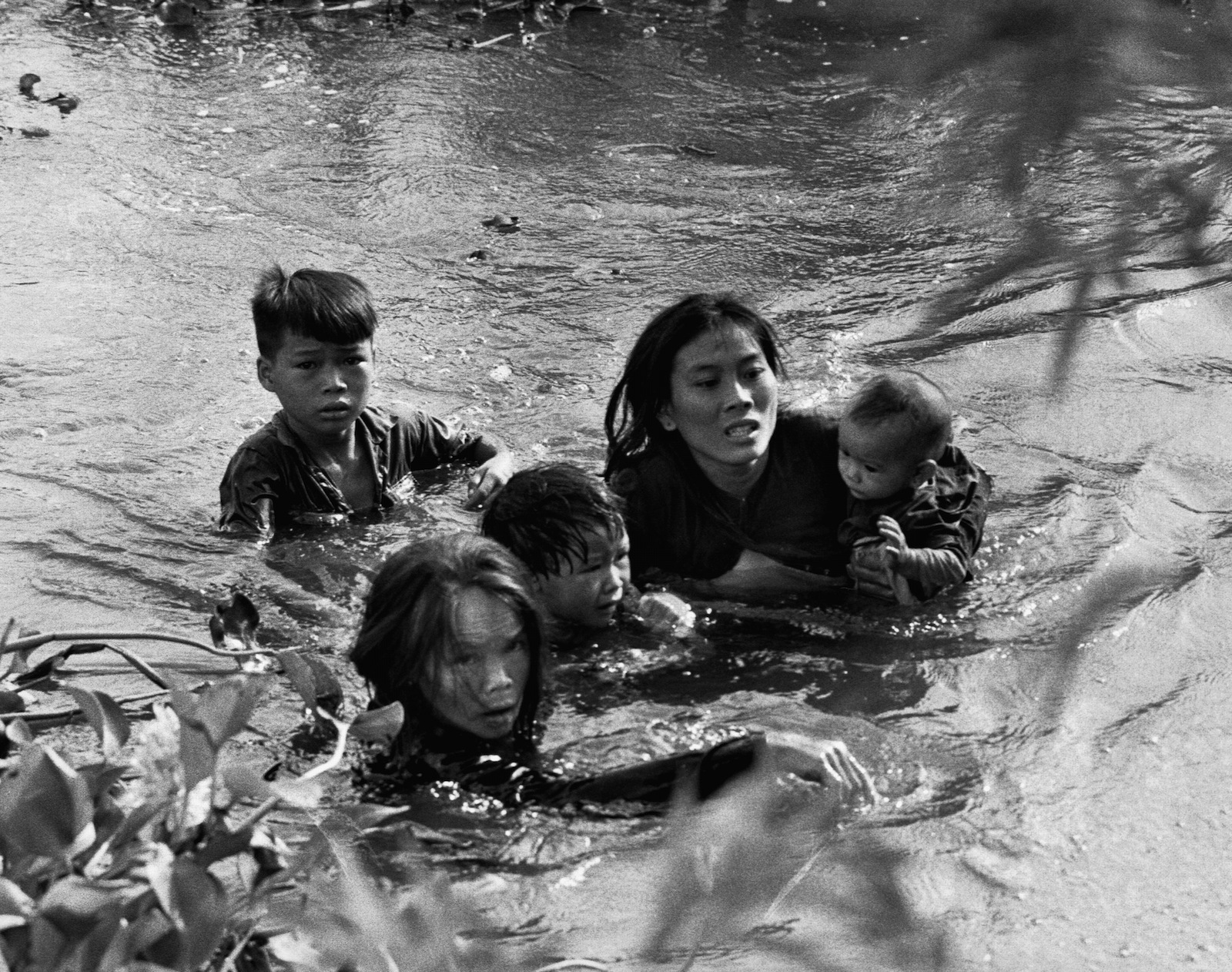 Сучки которые сбежали с ветнамцами 24 фотография